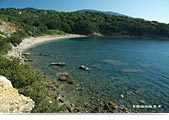 Island of Elba: beach of Barabarca