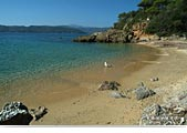Island of Elba: beach of Zuccale